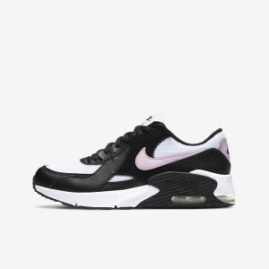 Zapatilla Air Max 90 CD6894-004